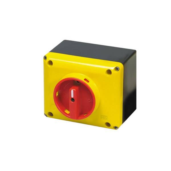 Interrupteur sectionneur 3P cadenassable en coffret •          40 A